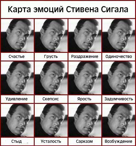 Стивен Сигал