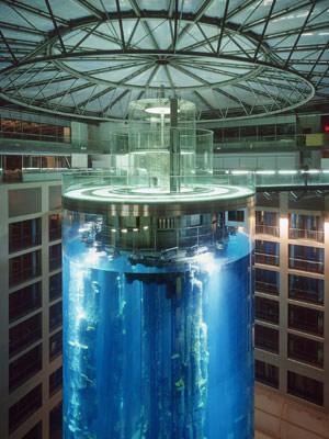 """Самый необычный аквариум в мире """"Аквадом"""""""