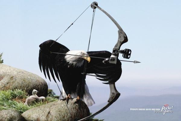 Орел поздравления