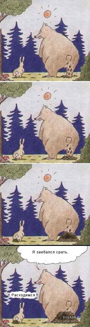 можно использовать, картинки прикол медведь и заяц год они