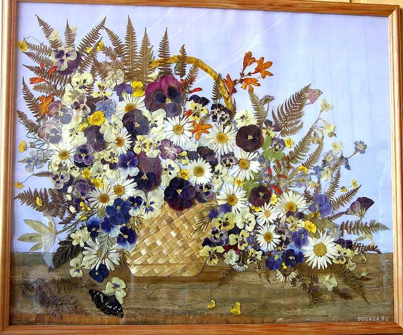 Картины из гербария своими руками