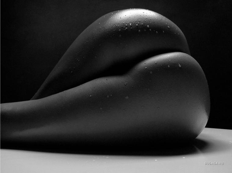 Женские попки черно белые