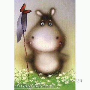 БЕГЕМОТИГИ ))