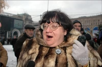 Жаба на Новодворскую