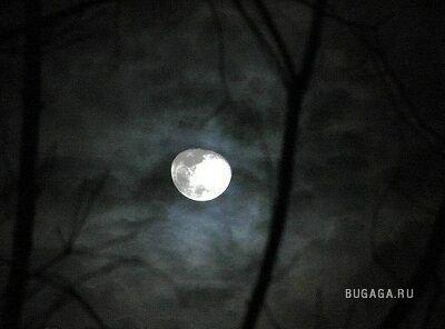 луч света .. капля ночи