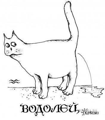 Кошачий гороскоп!