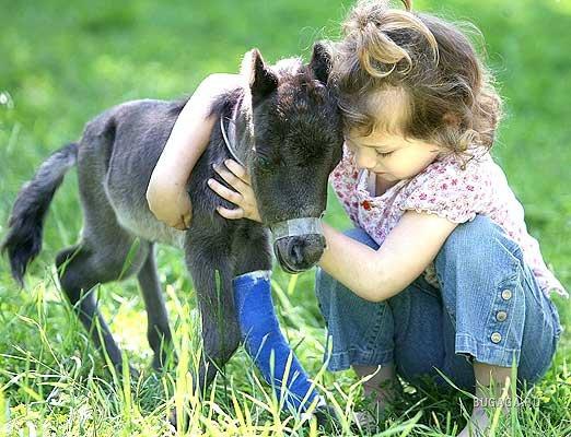 Рисунки о любви к животным