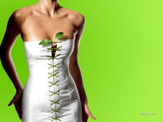 """Польза зеленого чая: свойства зеленого чая, похудение """" Будь здоровым"""
