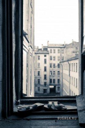 Сквозь окно