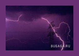 подборка : фиолетовый)