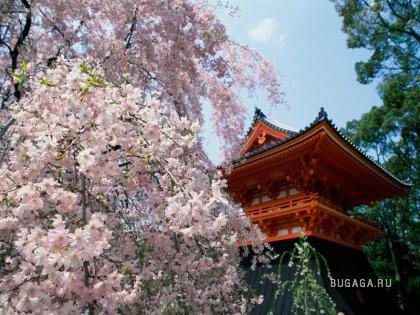 Фото-География: Япония