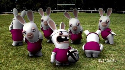 Крэйзи кролик