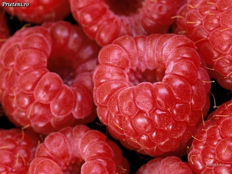 Клубника и черешня сдают свои права и уступают место другой летней ягоде- малине.