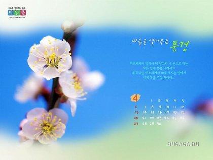 Странички из календаря