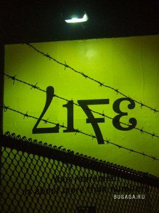 Жизнь в тюрьме... Любовь к свободе!