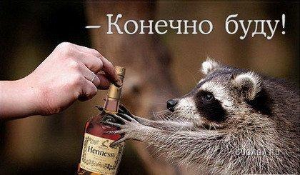 Зверьё)))))