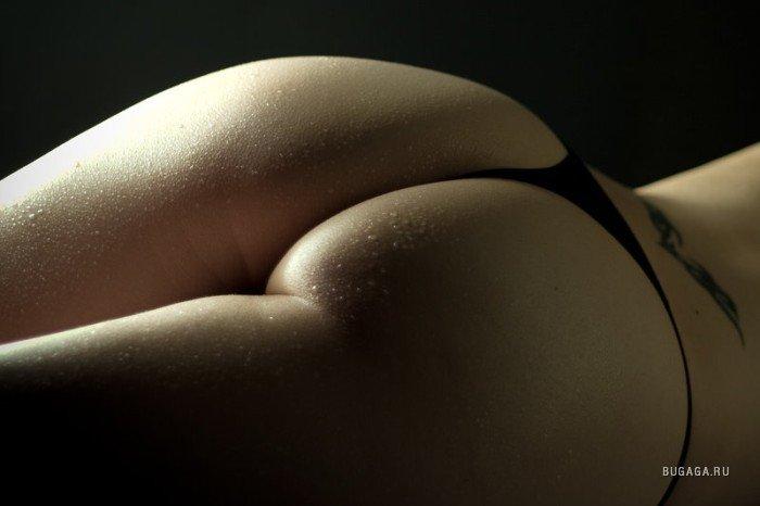 фото кругленьких попочек