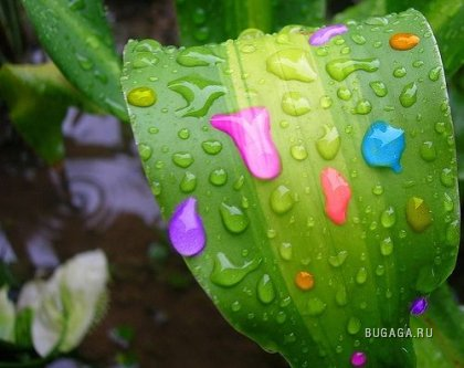 Цветной позитив (12 фото)