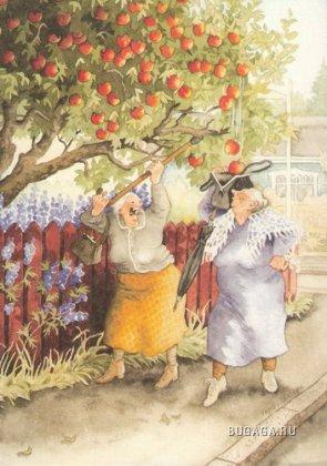Веселые бабульки
