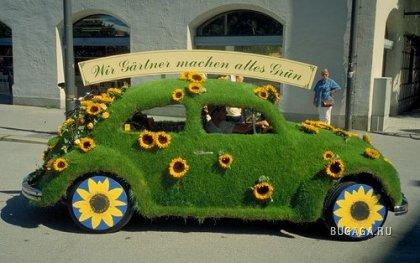 Авто покрытые травой