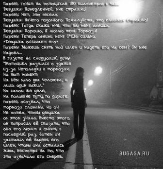 Стихи и фразы
