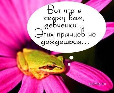 ПозитиФФненько