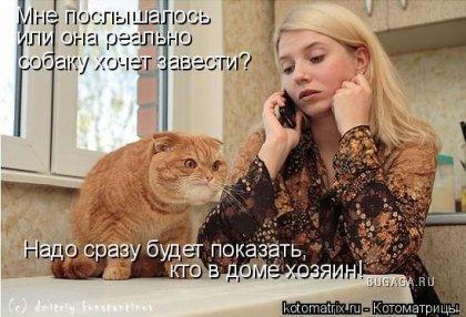 http://www.bugaga.ru/uploads/posts/2008-06/thumbs/1213806862_1213624299_4c.jpg