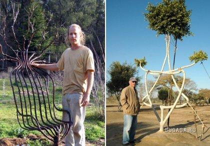 креативные деревья