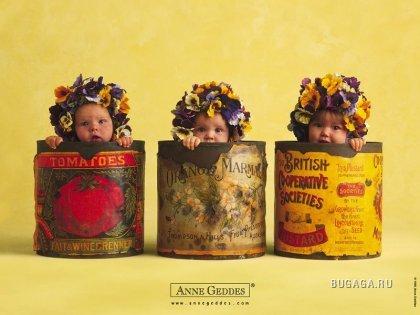 Работы Anee Geddes - любимые детишки