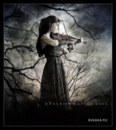 Черная роза 2