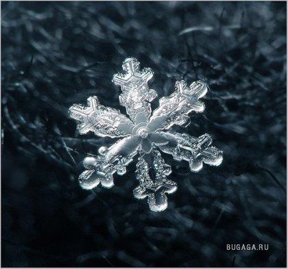 Красота Снежинок