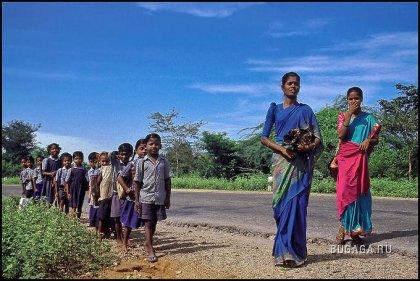 Индия глазами Анто Пуппи