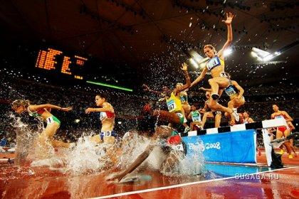 Лучшие фотографии Олимпиады 2008 в Пекине (2 часть)