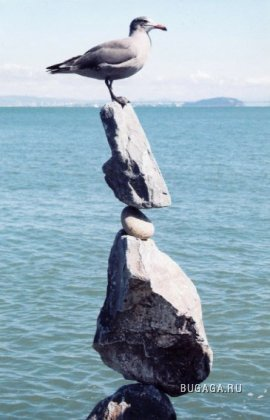Искусство балансирующих камней. Билл Дан