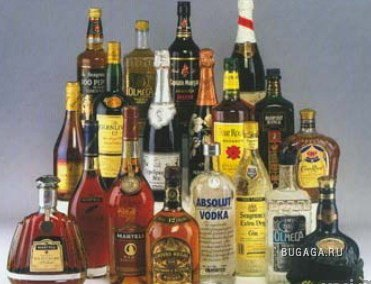 Алкогольные мудрости