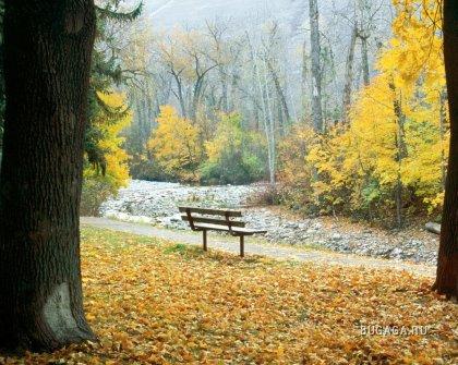 Осенние обои