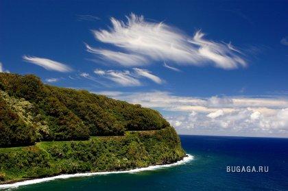 На тропических островах