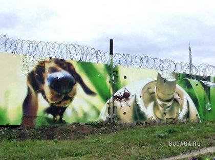 Граффити Виталия Русакова