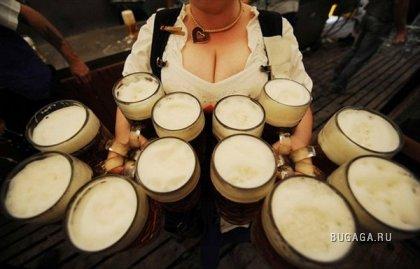 Праздник пива Октоберфест в Мюнхене