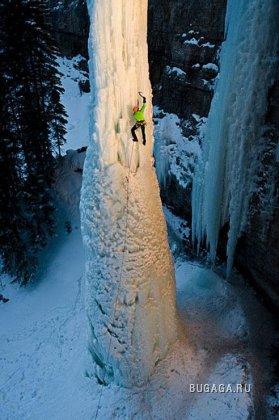 Ледяной клык