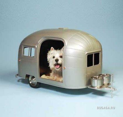 Собачьи апартаменты
