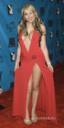 Порно-оскар AVN 2008