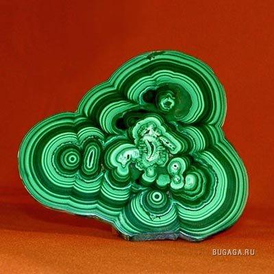 Мыслим в зелёном цвете