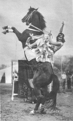 Цирк!!!