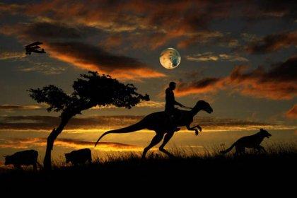 Лунные истории