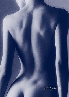 красивые части тела