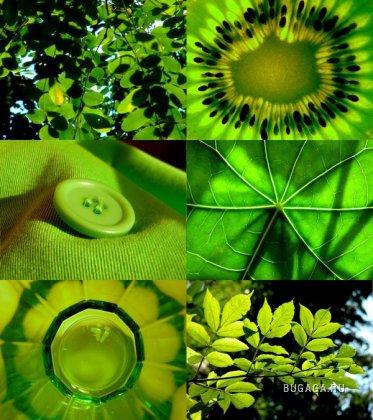 Любителям зелёного цвета ;)