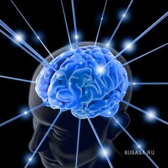 Малоизвестные факты о нашем мозге