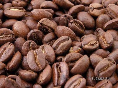 77 кофейных фактов