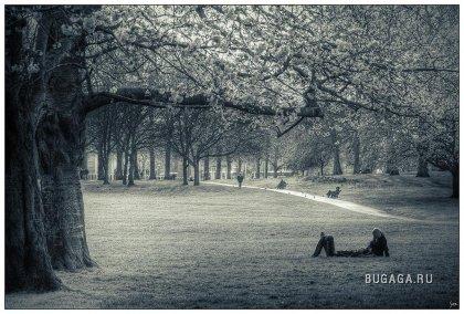 Работы фотографа Sven Duzont